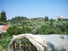 Greece property in Ionian Islands, Tragaki