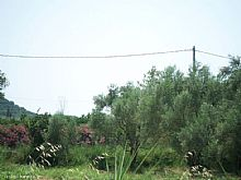 Greece property in Ionian Islands, Kypseli